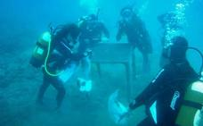 200 buceadores harán el domingo una gran limpieza de fondos marinos en Valencia