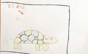 Noa moviliza a un pueblo entero de la Comunitat Valenciana para encontrar a su tortuga