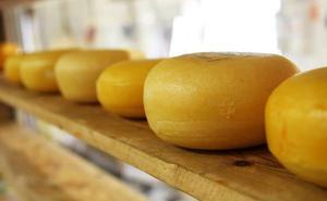 Un niño muere por una reacción alérgica tras echarle un compañero queso por encima