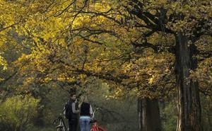 El otoño será más húmedo de lo normal