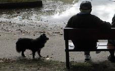 Una pareja de 74 y 72 años pasa dos noches durmiendo en un parque tras ser desahuciados