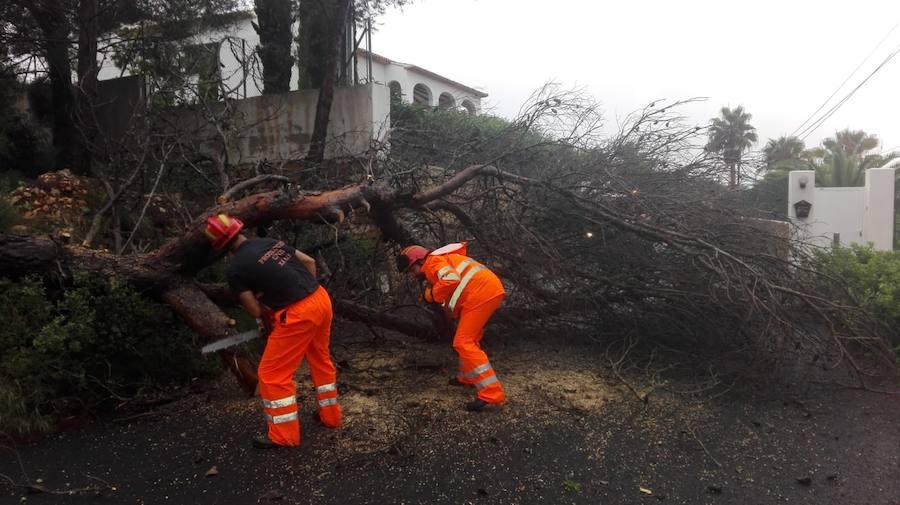 Efectos de la lluvia en la Comunitat Valenciana durante este martes 25 de septiembre