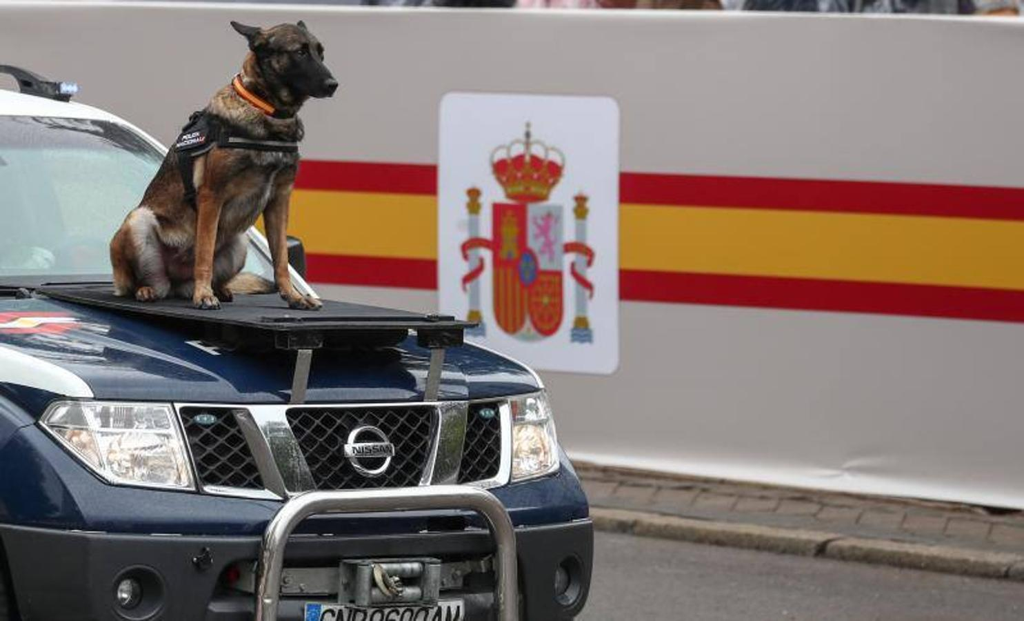 Fotos del desfile militar el 12 de octubre en Madrid
