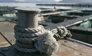 Detenido por robar el timón y la pasarela de un barco del Náutico de Valencia