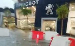El agua invade la zona de la Pantera Rosa en el centro de Valencia