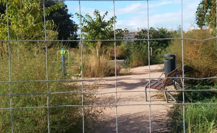 Vecinos de Malilla critican el mal estado de la jardinería