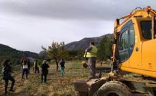 Paralizan los trabajos de arranque de almendros en Benissa de la campaña contra la xylella