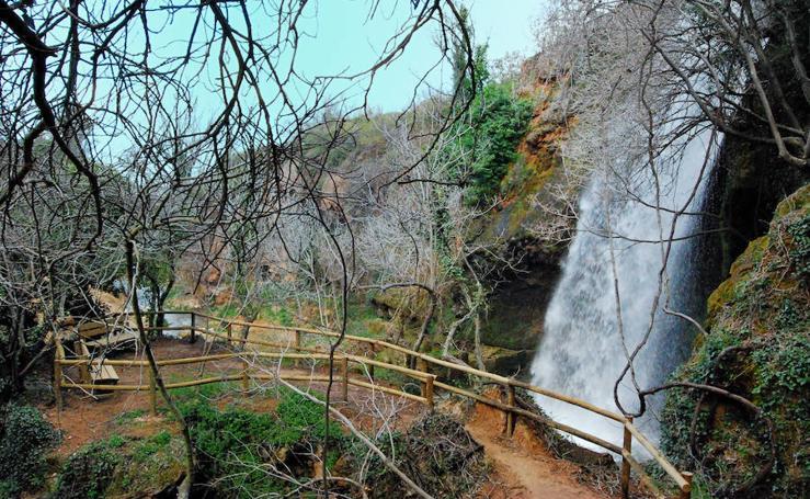 17 bosques valencianos para una escapada de otoño