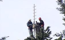 El Gobierno obliga por ley a garantizar una conexión a internet por todo el país