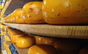 Estos son los 15 mejores quesos del mundo