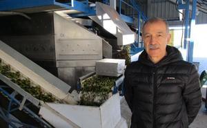 Tecnología sueca para el mejor aceite de oliva