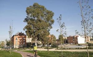 Valencia quiere que Benimàmet gestione su propio presupuesto