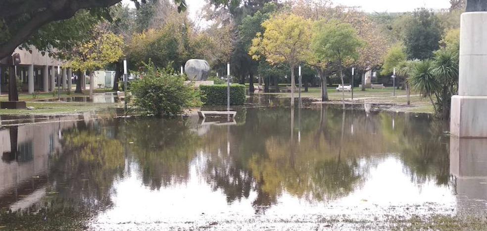 Limpieza extraordinaria para devolver la normalidad a la Universidad Politécnica de Valencia