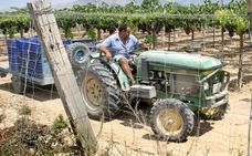 Investigan la apropiación indebida de un tractor agrícola en Cabanes