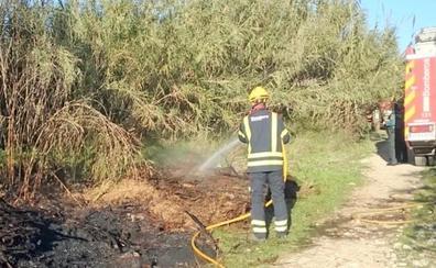 La rápida intervención de los bomberos evita la propagación de un incendio en la orilla del río Girona