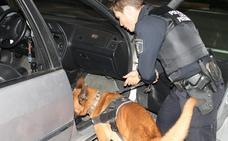 Fotos de la patrulla canina de Paterna