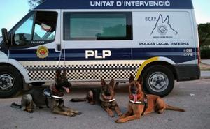 La patrulla canina que fulmina la droga en Paterna