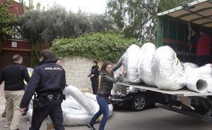 Las mafias chinas y de Europa del Este irrumpen en el tráfico de marihuana en la Comunitat