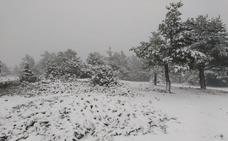 La borrasca Flora deja la primera nevada en Valencia