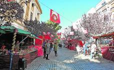 La Navidad llega a la Diputación de Alicante con actividades para todos