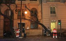 Un camión se estrella contra un árbol en la Gran Vía Marqués del Turia y colapsa el centro de Valencia