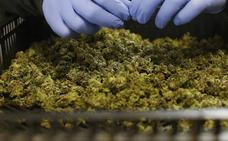 La Guardia Civil sorprende a un conductor valenciano con 23 kilos de marihuana