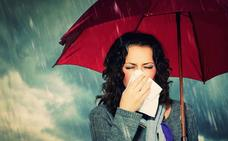 Gripe: qué tipos hay y cómo tratarla