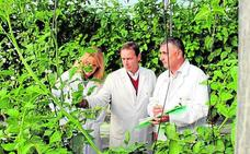 Cajamar crea una Incubadora de Empresas de alta tecnología del agua