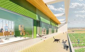 El nuevo refugio de animales de Valencia será visitable y tendrá espacio para cerca de 200 mascotas