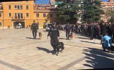 La falta de un convenio con el Ayuntamiento bloquea la unidad canina de la Policía Local