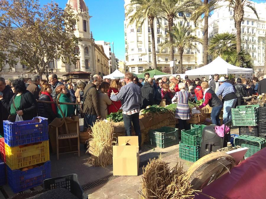 De Horta a Plaza del Ayuntamiento
