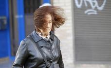 Alerta amarilla por vientos de hasta 80 km/h en la Comunitat
