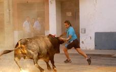 Valencia recuerda a los grandes maestros del bou al carrer
