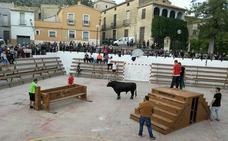 Agenda de los bous al carrer para este fin de semana en Valencia, Alicante y Castellón