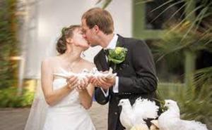 Una novia vegana no invita a familiares a su boda porque «no quiere asesinos»