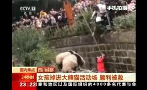 El angustioso rescate de una niña tras caer al foso de los osos panda en China