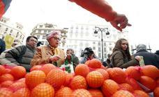 Los agricultores reparten 4.000 kilos de naranjas gratis en Valencia