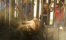 Agenda de los bous al carrer en Valencia, Alicante y Castellón para este fin de semana