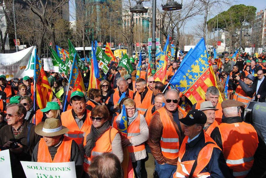 Los agricultores valencianos protestan en Madrid por la crisis citrícola