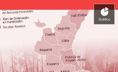El monte valenciano, sin protección