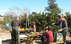 Agricultor por un día en Valencia (gratis para los niños)