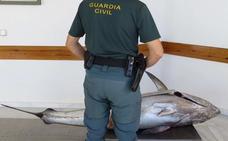 La trama valenciana del atún tóxico