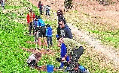 Cientos de vecinos ayudan a repoblar el cauce del río Magro