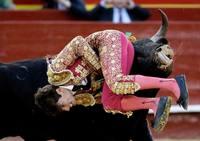 Corrida de toros del martes 12 de marzo en la Feria de Fallas