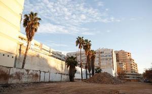 Las viejas palmeras de Vallejo, contra las grúas