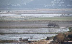 El Consell iniciará con un año de retraso la reparcelación de la Marjal de Pego