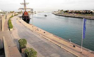 La Marina plantará otros 200 árboles para ganar más zonas de sombra