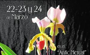 Burjassot acoge por primera vez una feria de orquídeas
