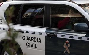 Un hombre maltrata a 30 perros en Peñíscola