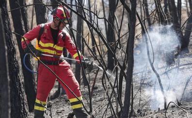 Medio Ambiente planea prohibir que los agentes forestales actúen en los incendios